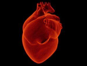 Acute Heart Attack Detection (akuutin sydänkohtauksen detektointi)