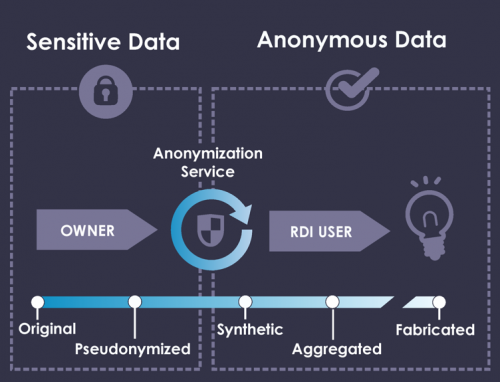 Privacy-preserving AI for Synthetic and Anonymous Health Data